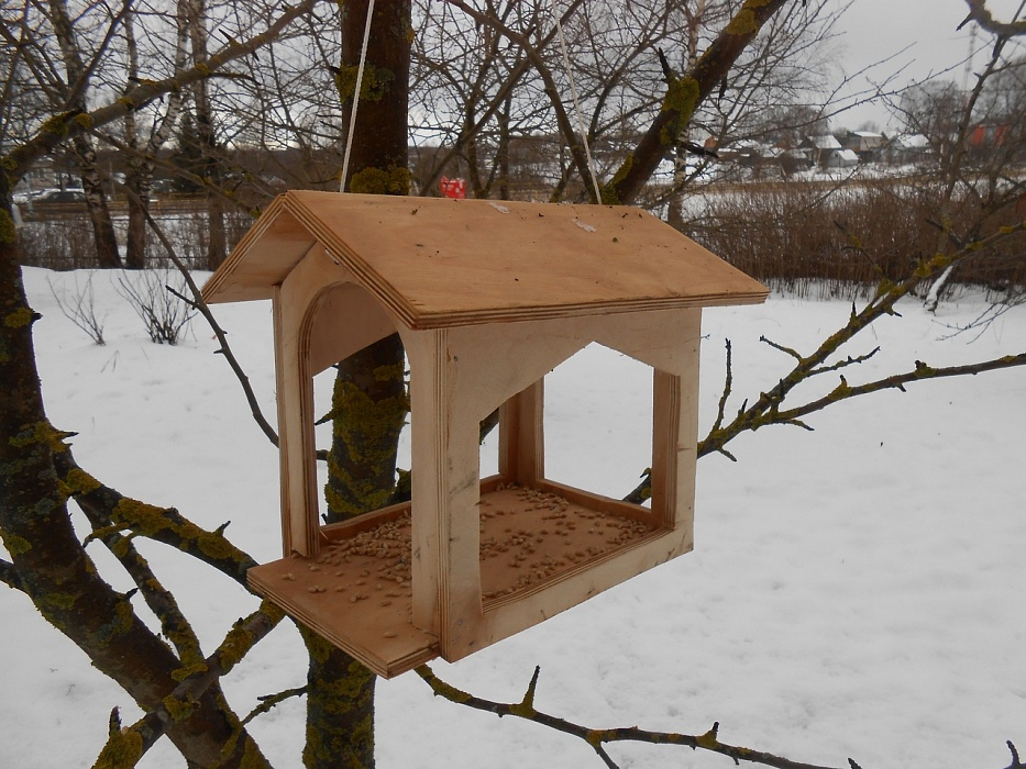 Ученики Сандовской школы смастерили кормушки и помогли птицам