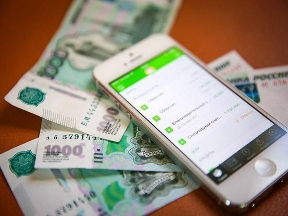 В Андреапольском районе раскрыли крупную кражу денег