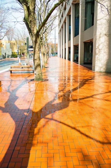 Национальный проект позволит отремонтировать тротуары в Твери