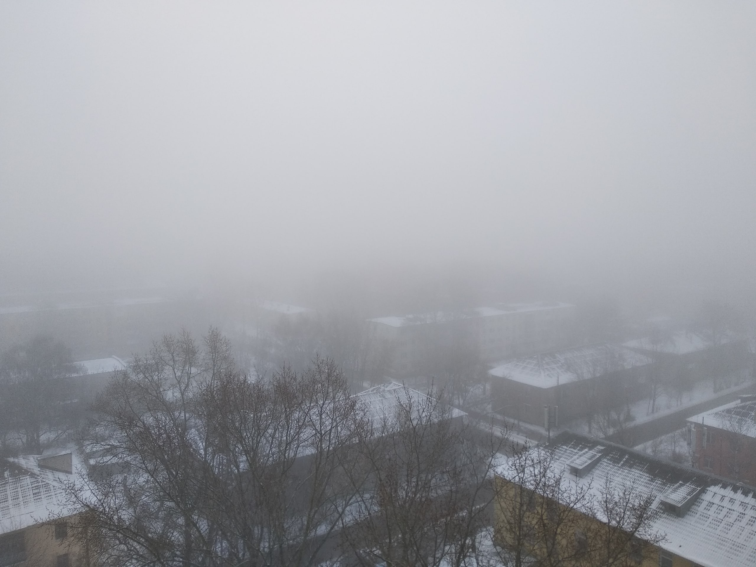 На Тверь опустился густой туман