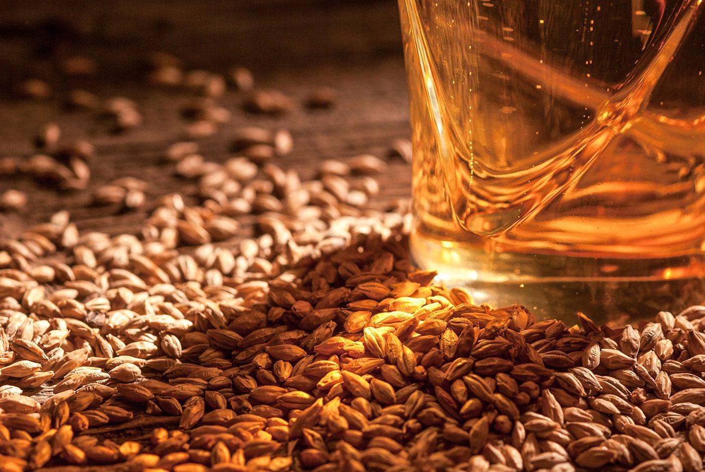 Алкогольная продукция в Тверской области станет безопаснее