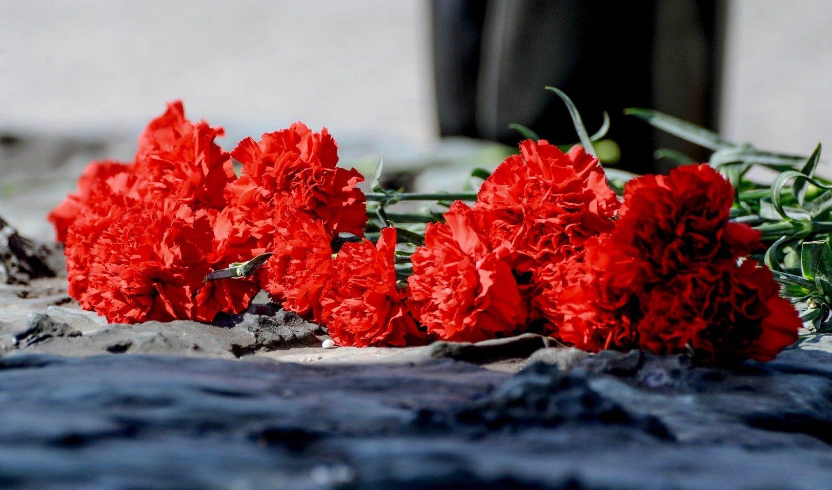 Школьники Верхневолжья вырастят цветы в честь 75-летия Победы