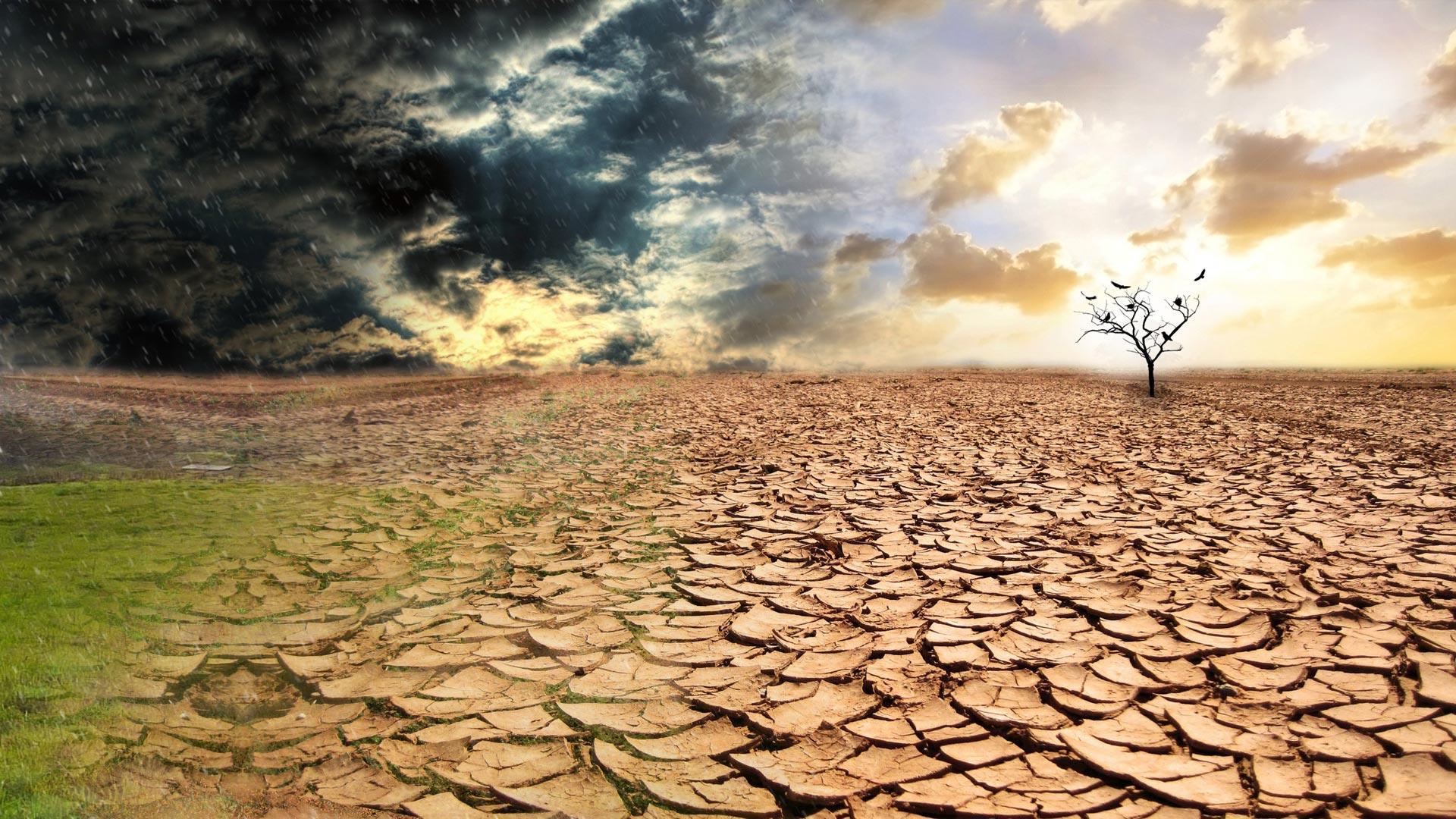 В Твери пройдет лекция о климате