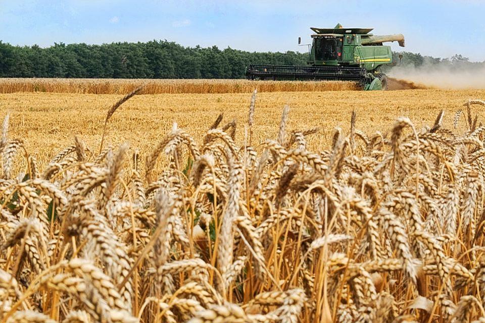 В Тверской области утвердили перечни населенных пунктов для участия в «Комплексном развитие сельских территорий»