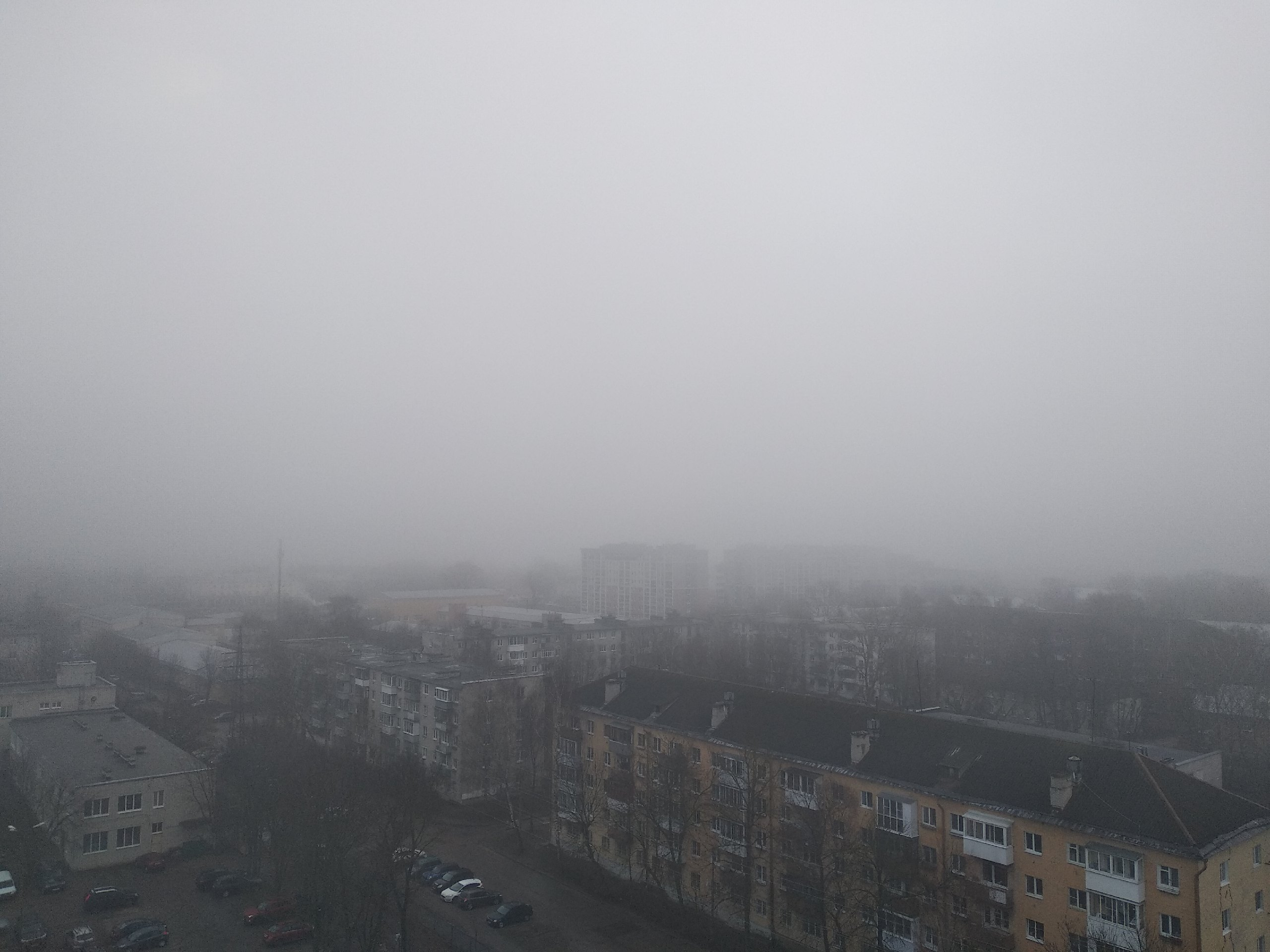 Из-за тёплой погоды на Тверь опустился туман