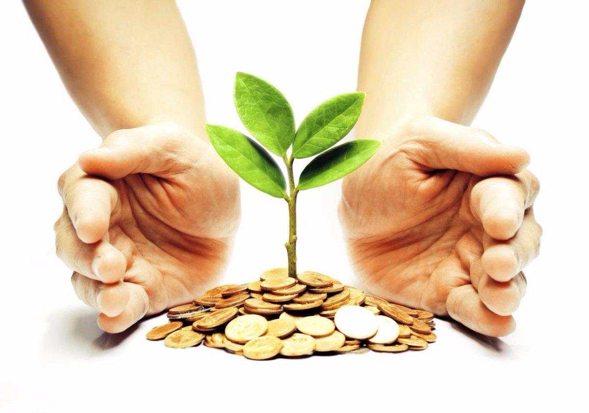 Маргарита Морозова: Инвесторов нужно беречь и лелеять