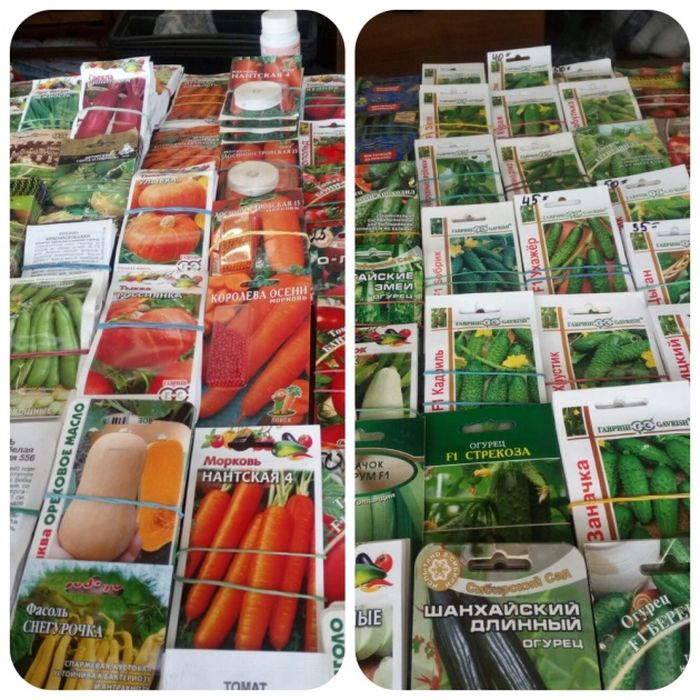 На рынке в Осташкове продавали семена с низким процентом всхожести