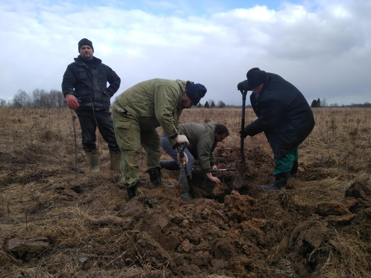 В Зубцовском районе Тверской области нашли неизвестного солдата