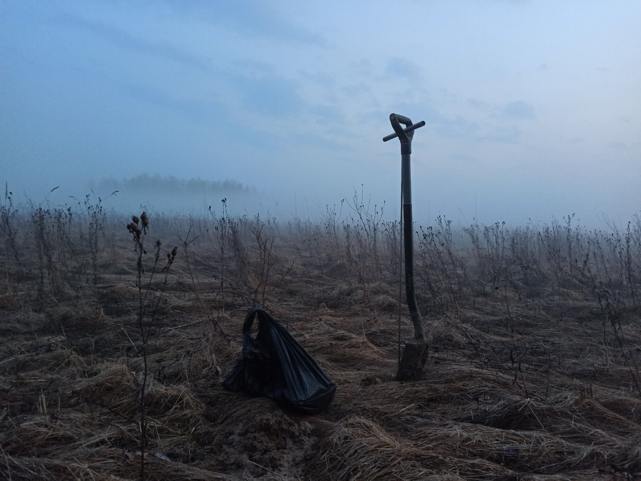 В Тверской области обнаружили останки трех красноармейцев