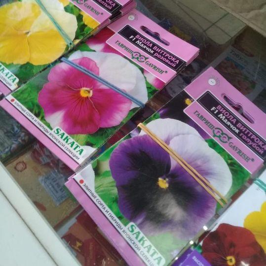 На рынке в Торжке продавали семена без документов