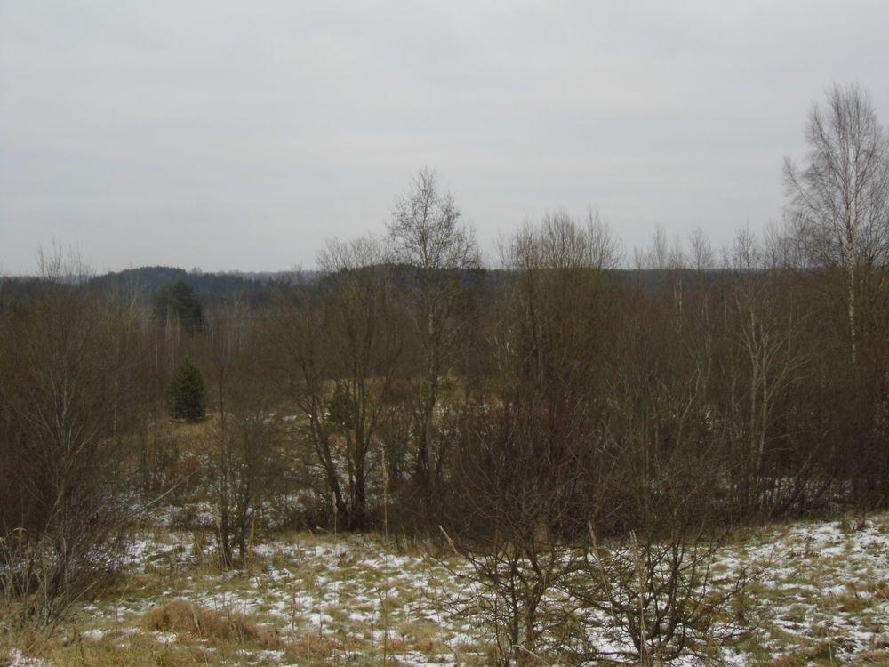 Собственник земель из Тверской области привлечен судом к ответственности