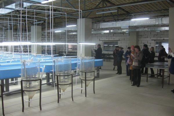 Как разводили рыбу в Тверской области более века назад