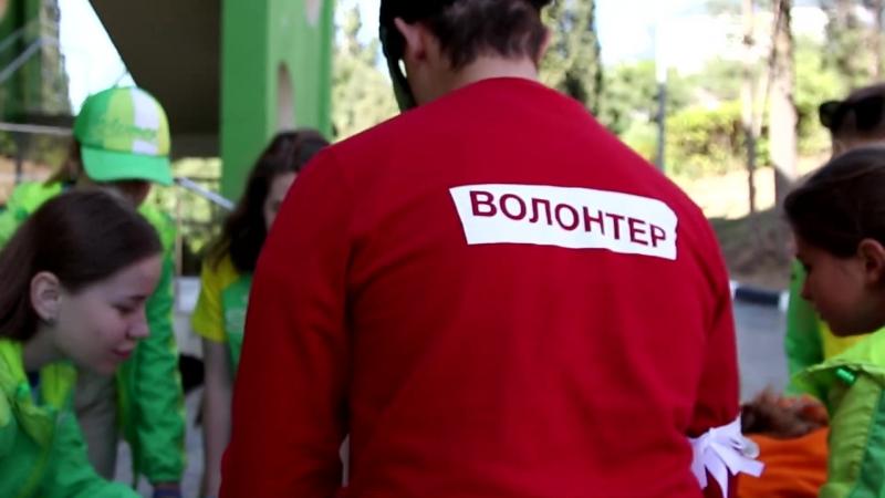 Тверским школьникам предлагают стать участниками волонтерской смены в «Артеке»