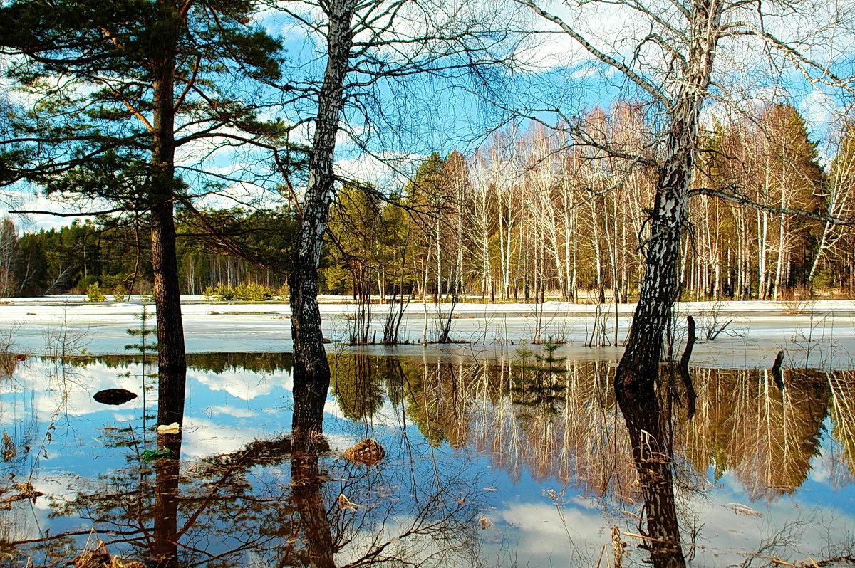 В случае паводка для жителей Тверской области развернут девять пунктов эвакуации