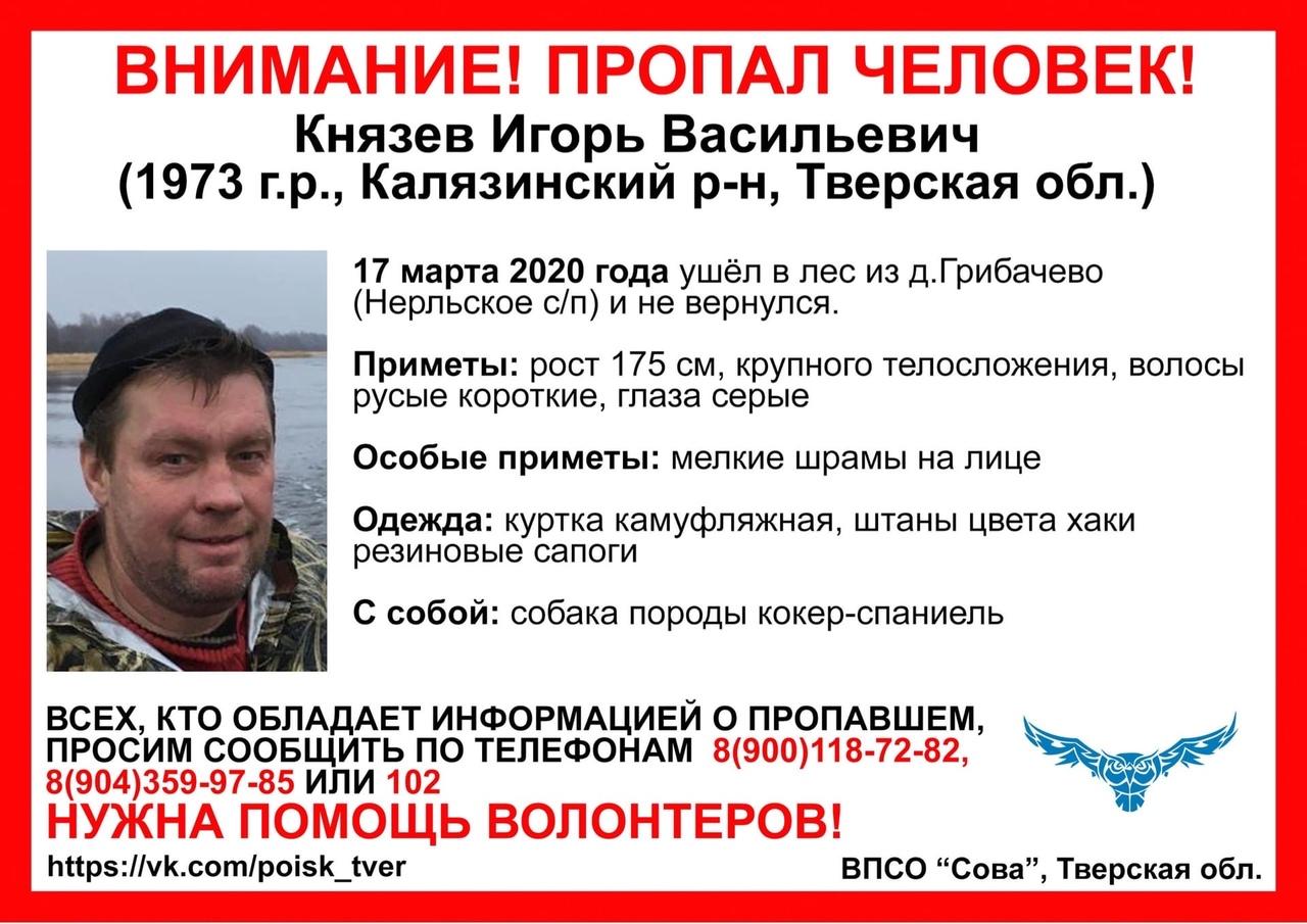 В Тверской области мужчина ушел в лес и пропал