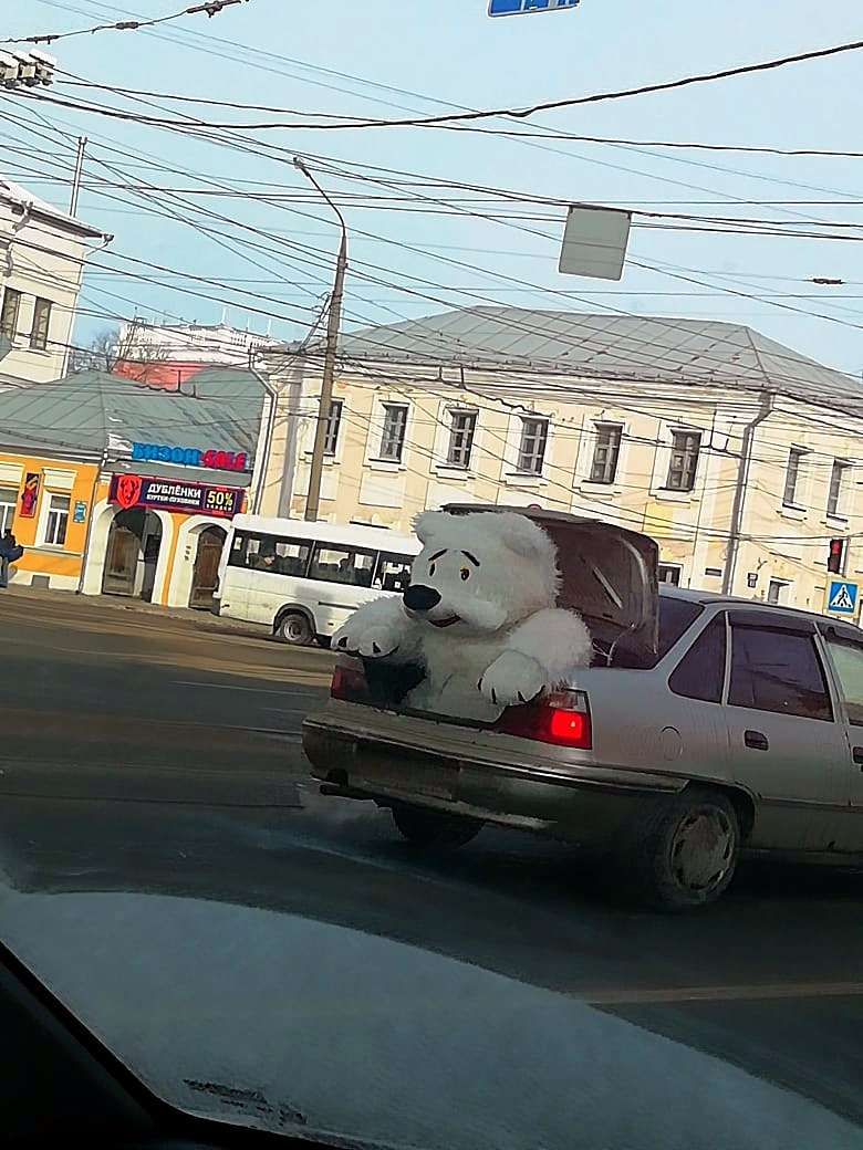 Тверские водители отслеживали передвижение огромной игрушки по городу