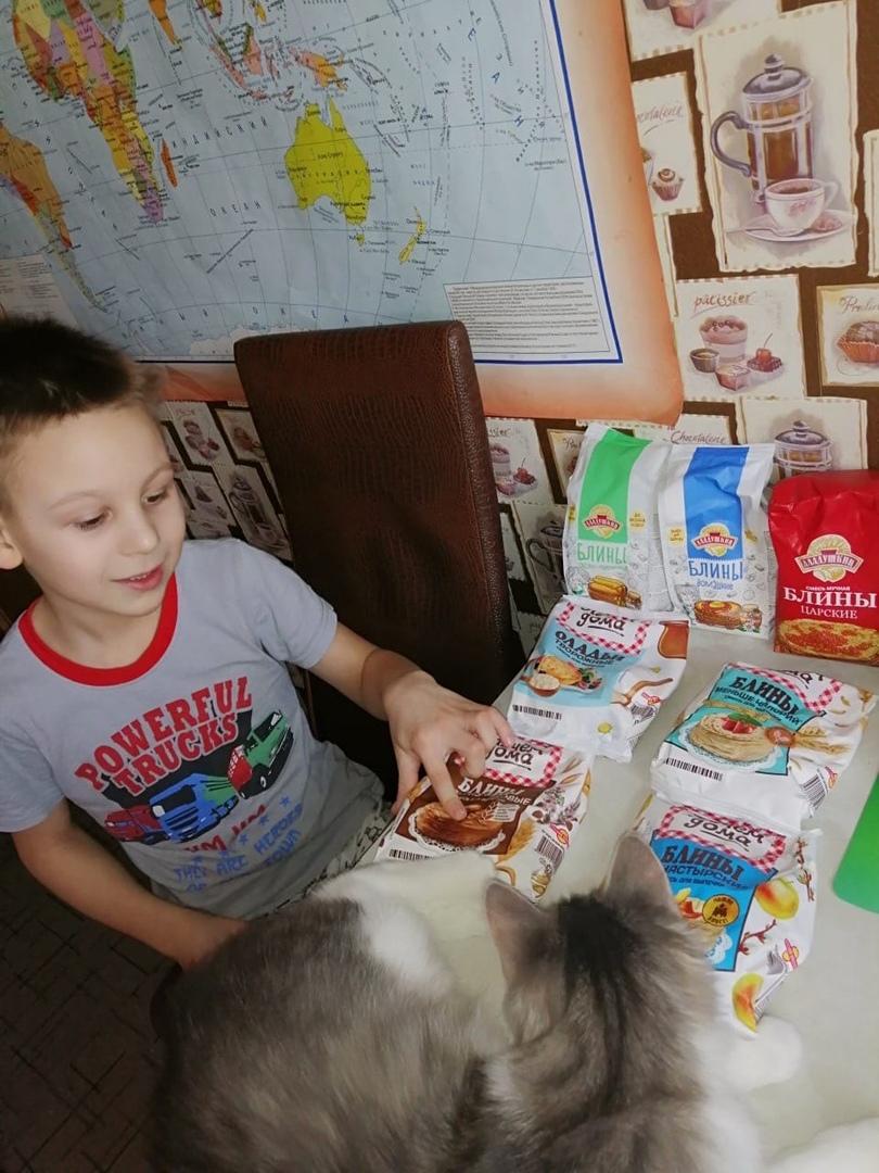 Бездомный кот Грэй обрел семью в Твери и открыл кулинарный талант