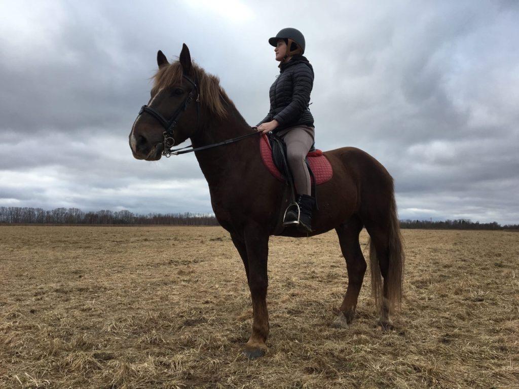 Девушка на коне: чем живет конный спорт Твери