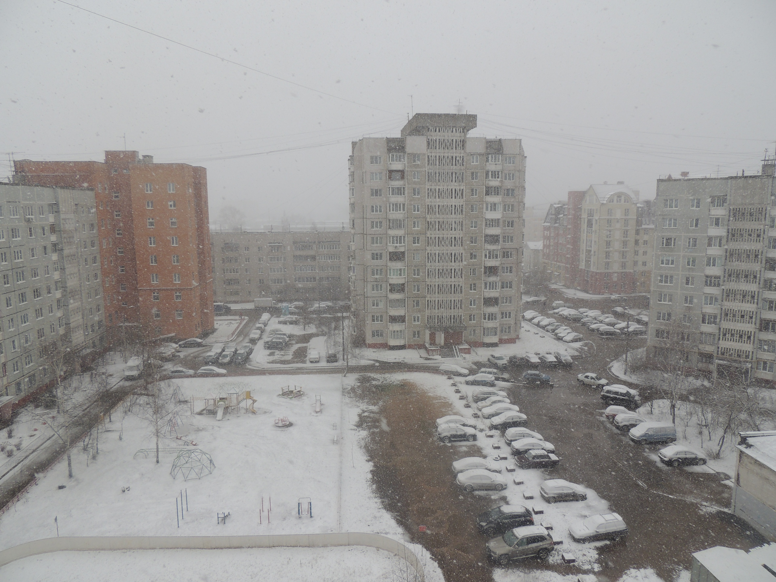 В Тверской области  выпал снег