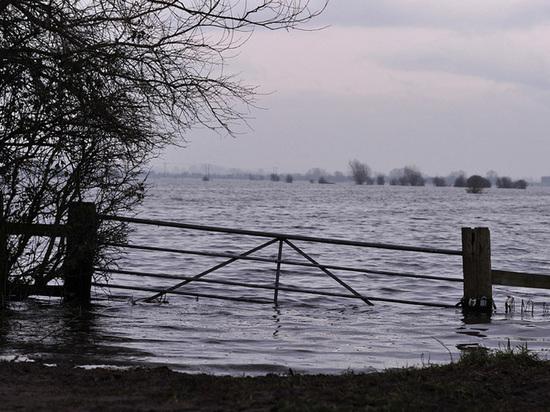 Уровень воды в озерах Тверской области достиг критической отметки