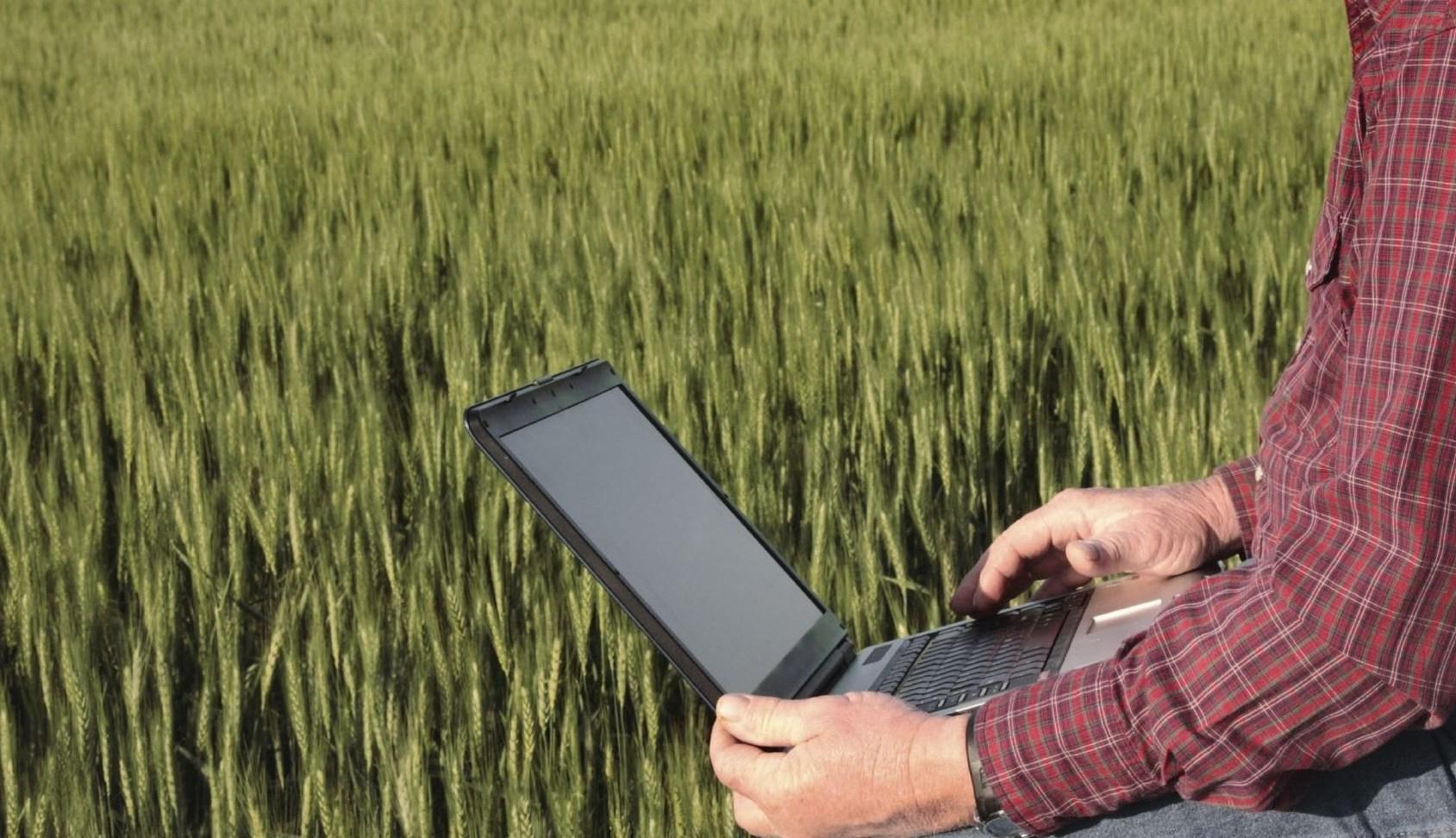 Аграрии Тверской области могут подать документы на получение субсидий через МФЦ