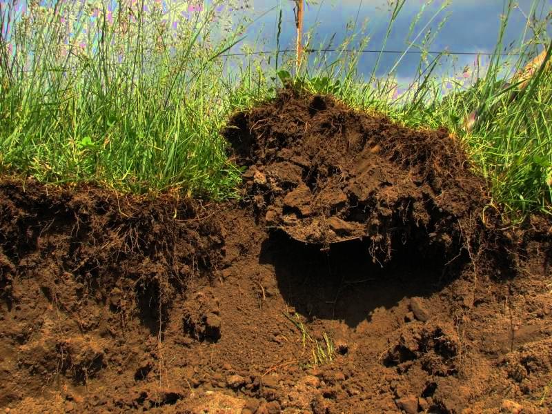 В Калининском районе выписали крупный штраф за снятие плодородного слоя почвы