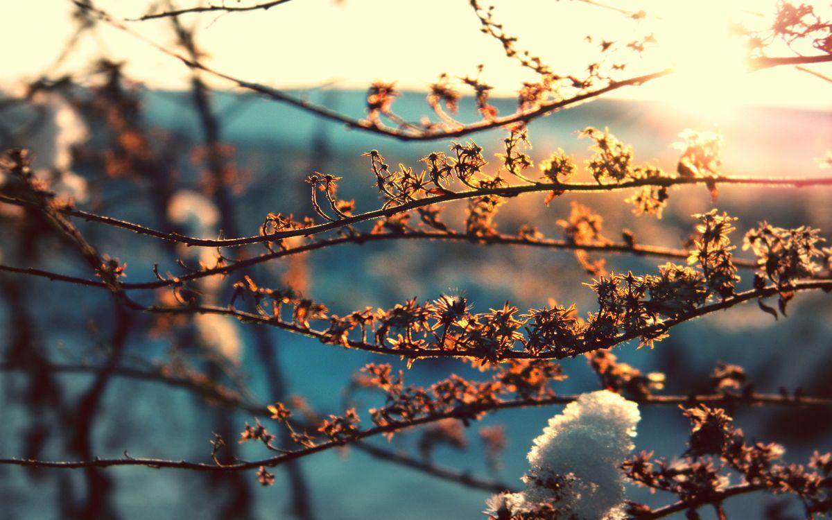 В Тверскую область придет солнечная погода
