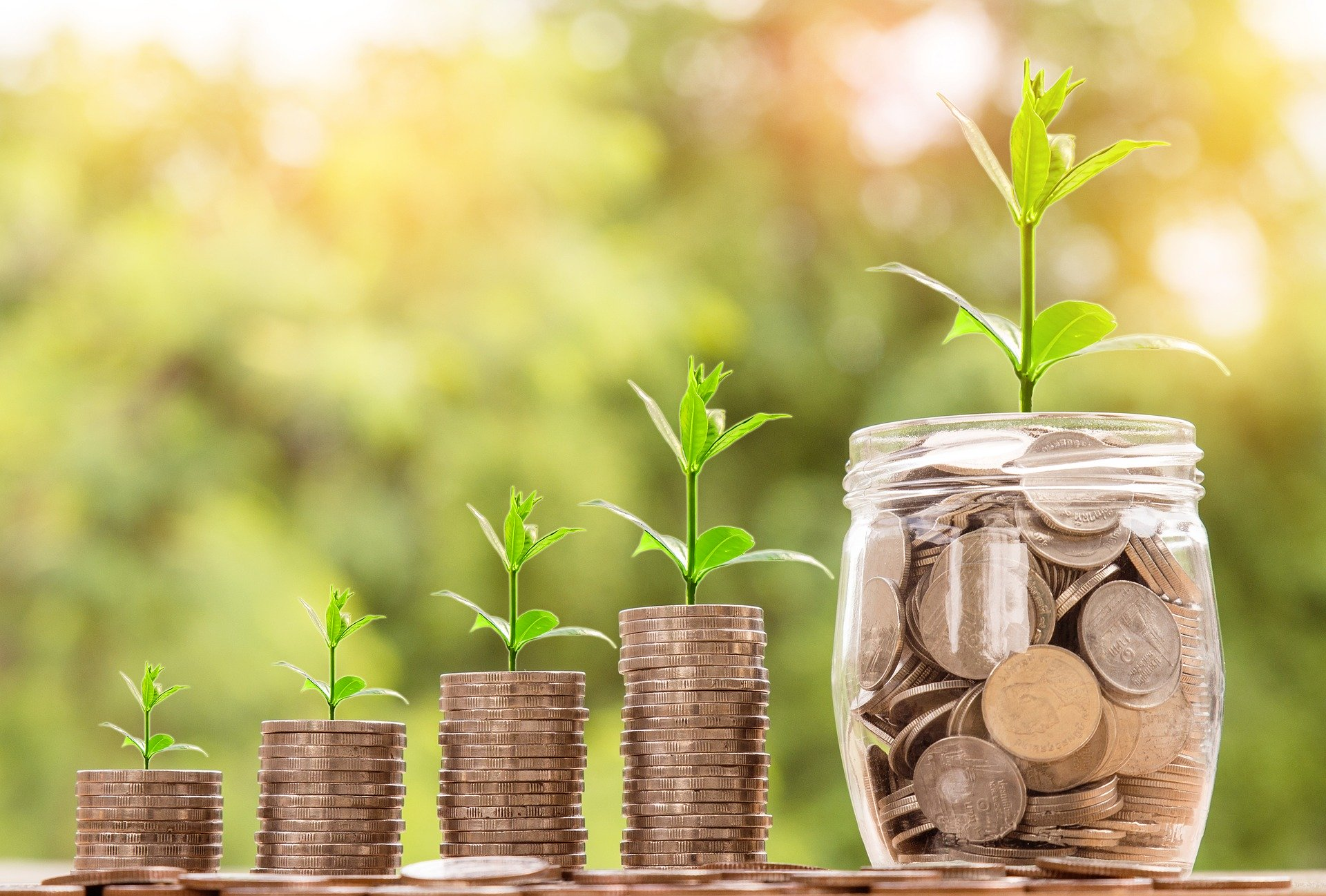 МаргаритаСкарлыгина:Инвестиции помогают развивать территорию