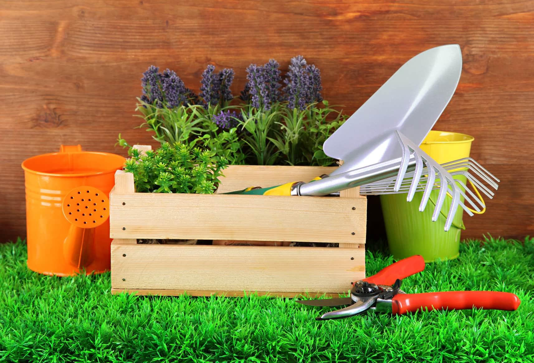 Под Тверью расширят производство товаров для сада и огорода