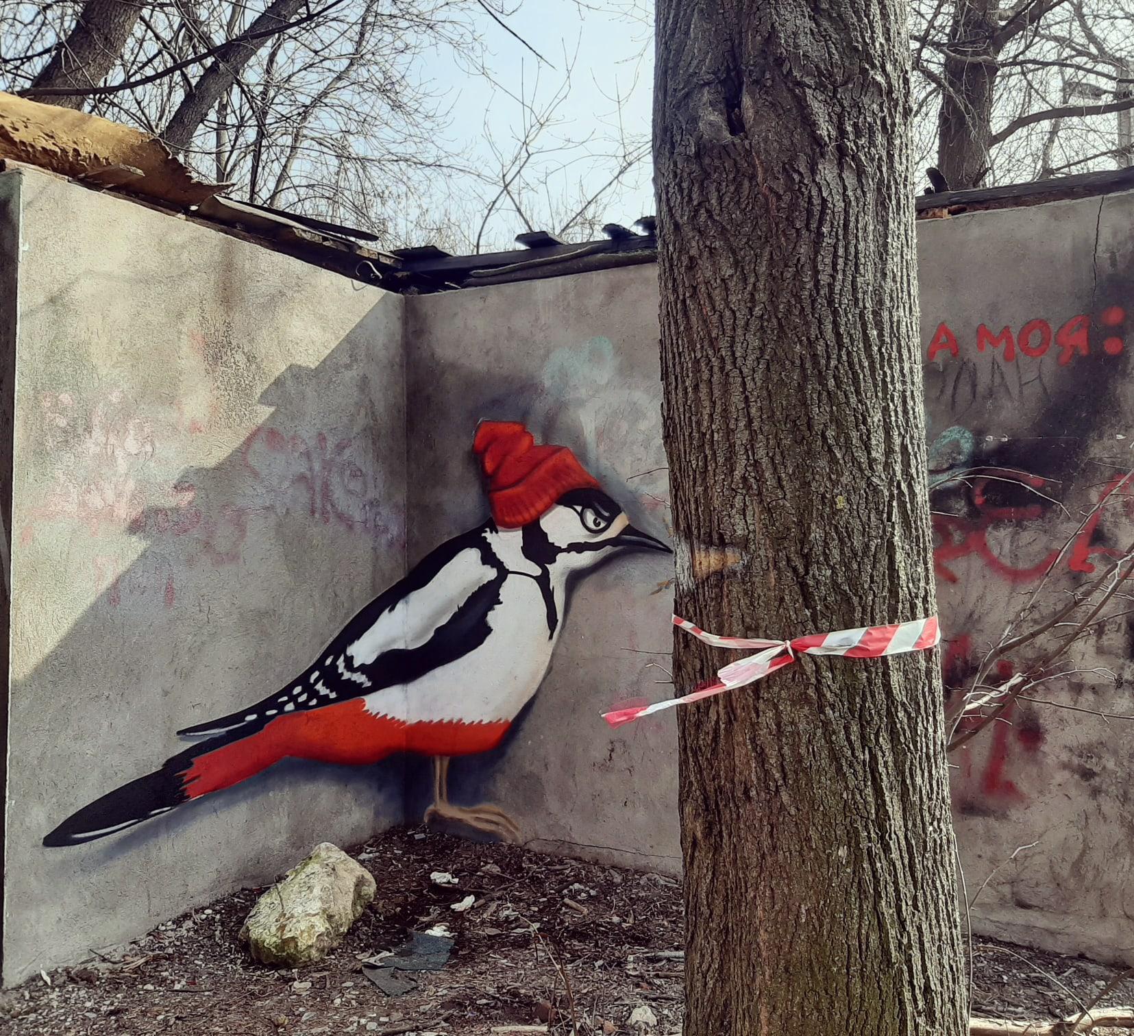 В Твери появилось красивое граффити с интересным визуальным эффектом