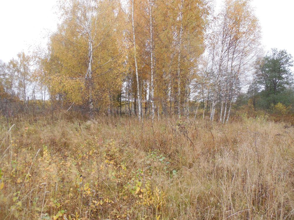 В Тверской области землевладельцу грозит крупный штраф