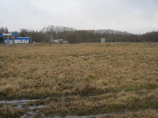 В Торжокском районе собственник устранил нарушение требований земельного законодательства