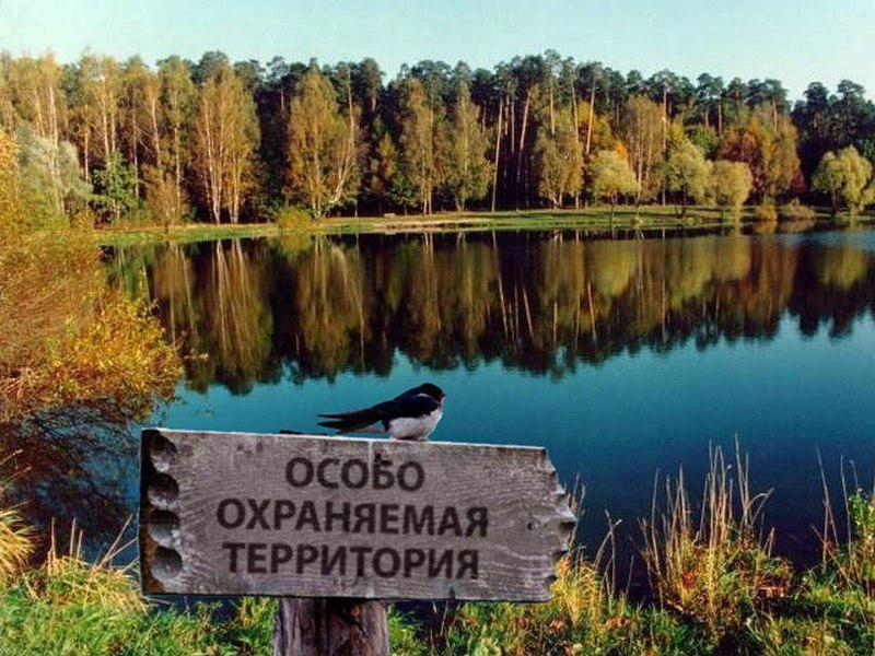 В Тверской области утверждены границы особо охраняемых природных территорий