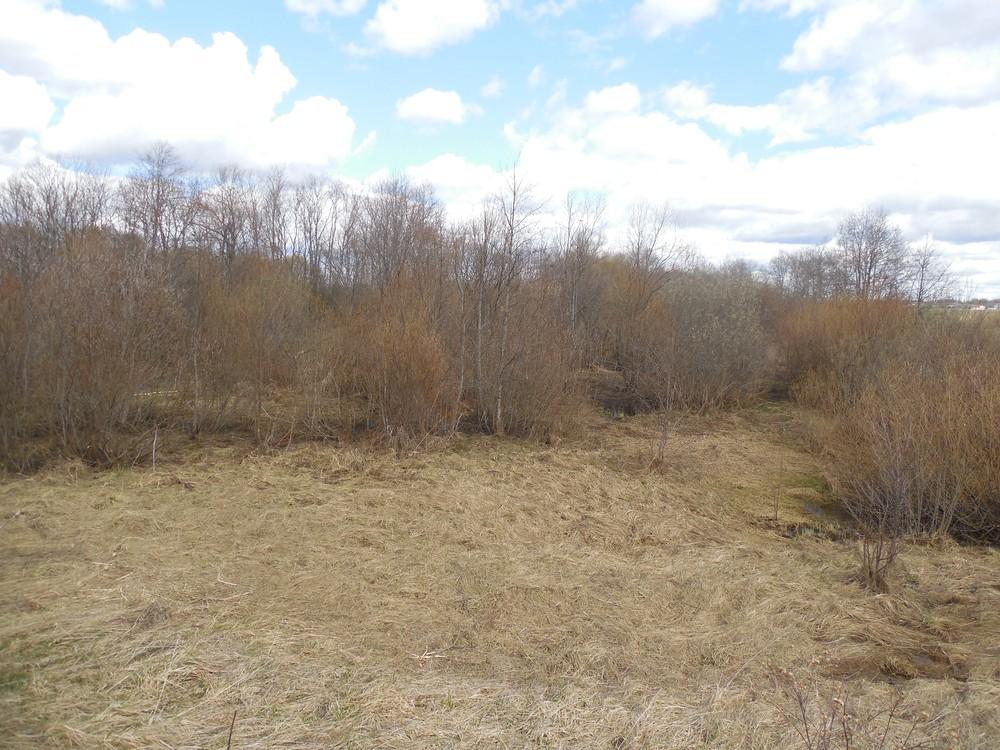 В Западнодвинском районе Тверской области зарастает свыше ста гектаров земель