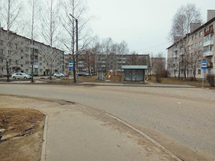 В Тверской области мужчина нашел незаконное растение на остановке