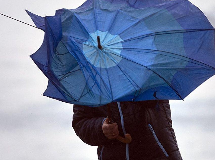 В Тверской области усилится северо-западный ветер