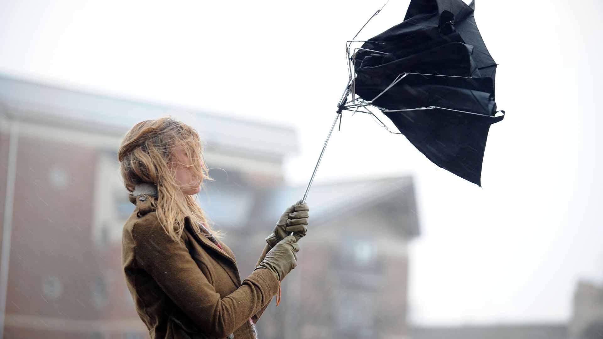 В Тверской области ожидается штормовой ветер и сильный дождь