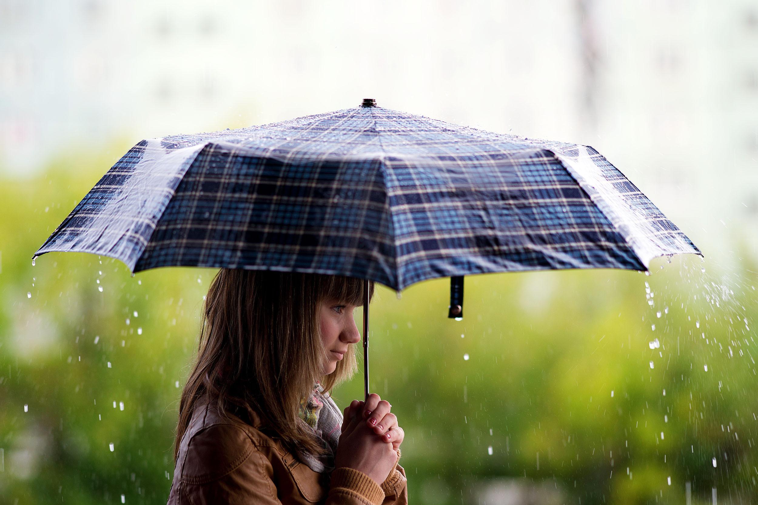 Пятница в Тверской области будет дождливой