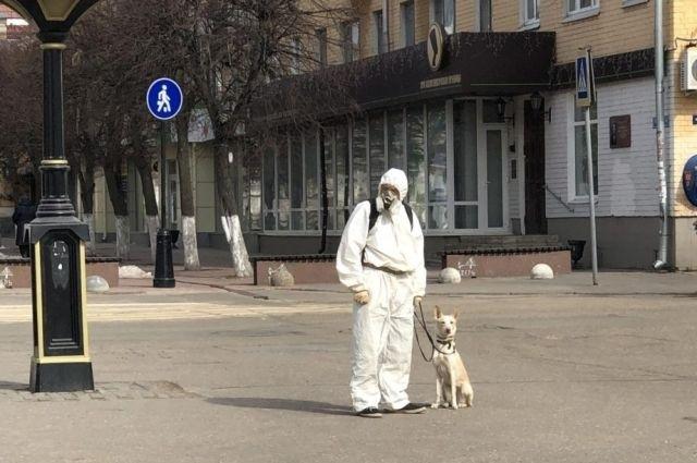 В Твери выгуливают собак в защитном костюме