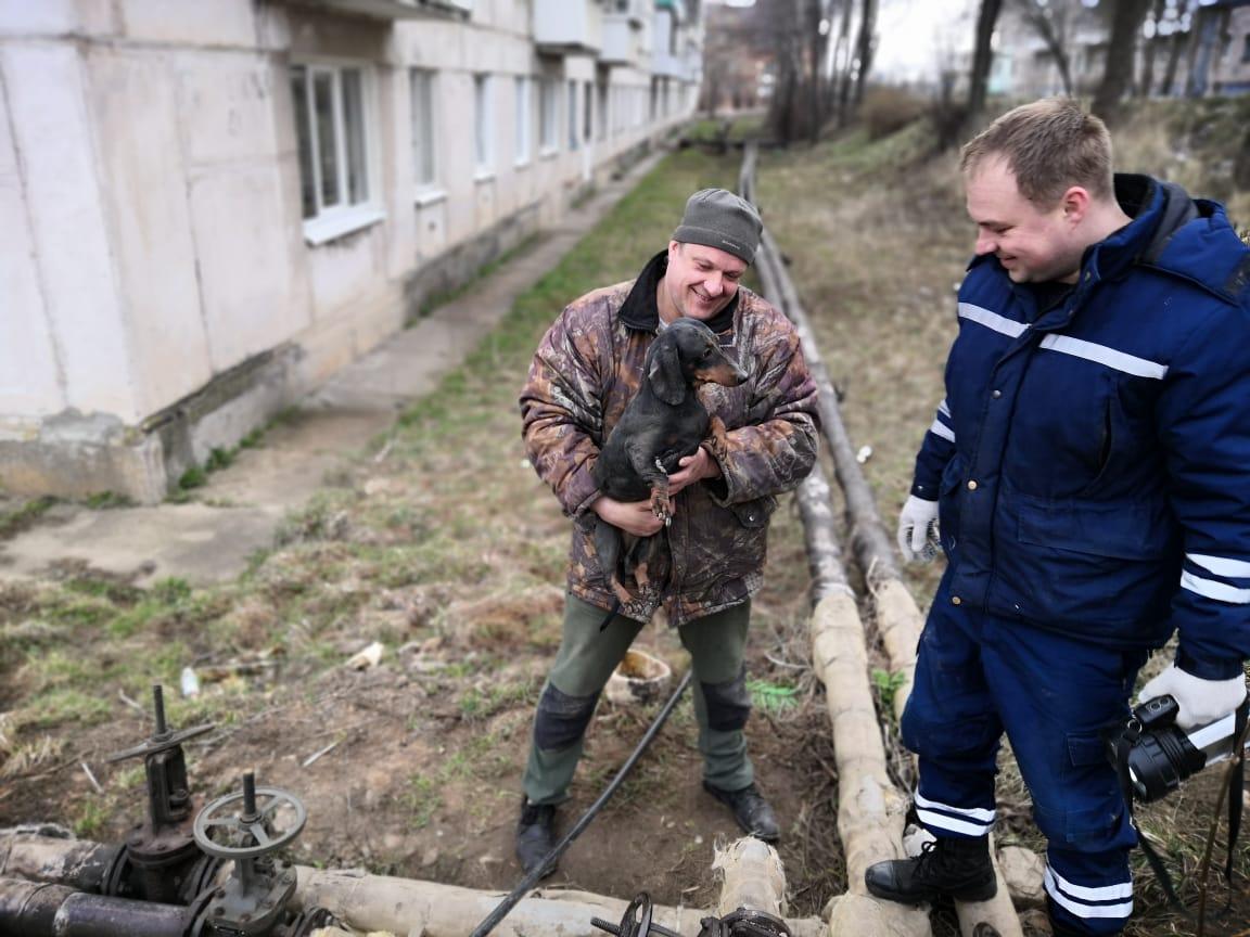 В Тверской области прошла операция по спасению милой собачки