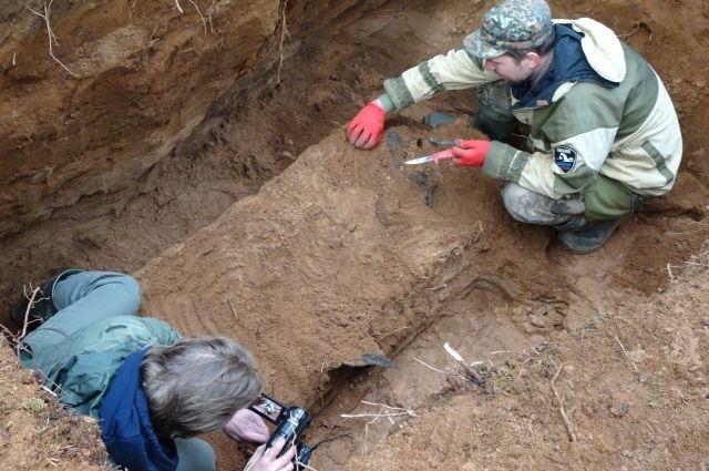 В Тверской области нашли останки известного советского летчика