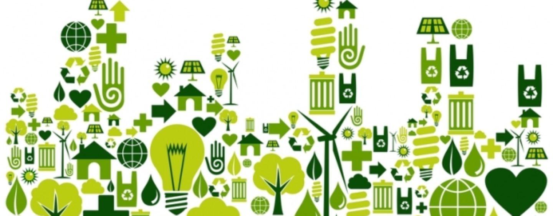 Жители Тверской области могут принять участие в экологических проектах онлайн