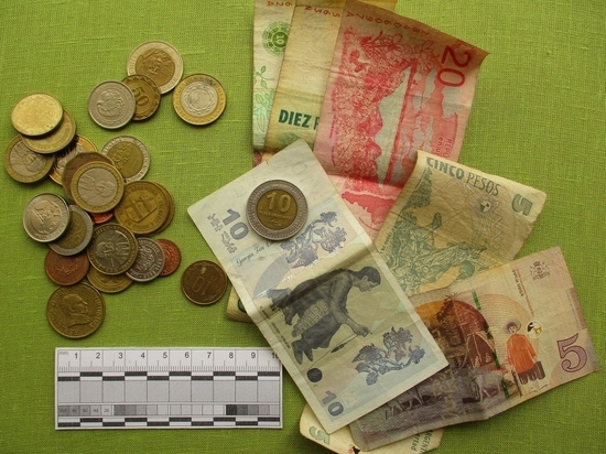 Музей в Тверской области получил южноамериканские деньги и рога