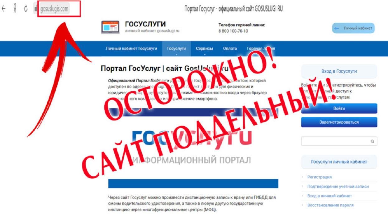 Жителей Тверской области предупреждают о появлении фейковых сайтов Госуслуг