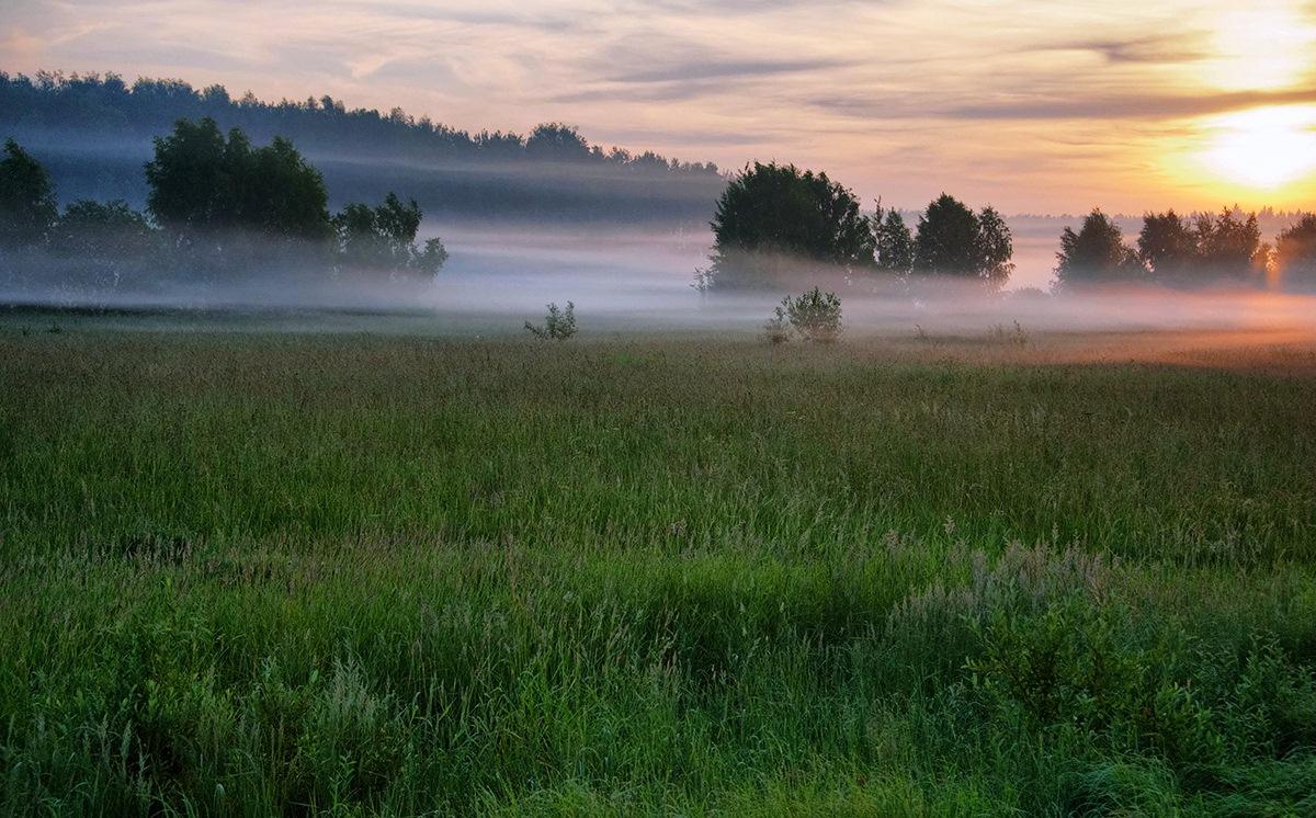 В Тверской области первые дни лета будут прохладными