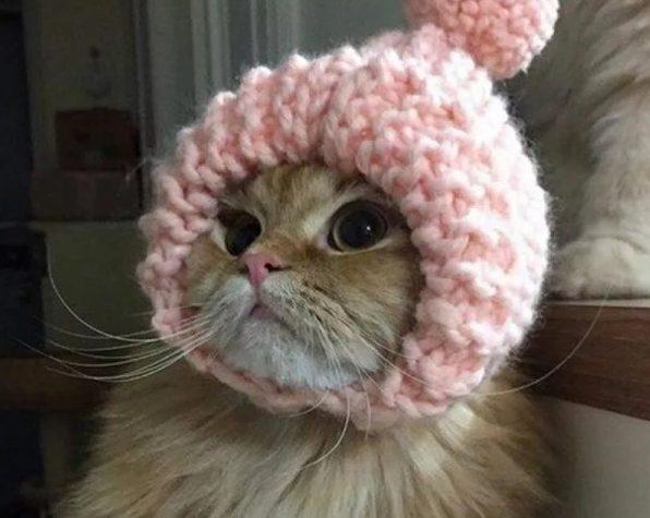 В Тверской области станет холоднее