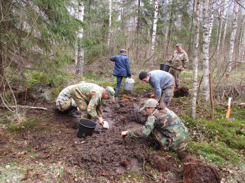 На болоте в Тверской области найдены останки советского солдата