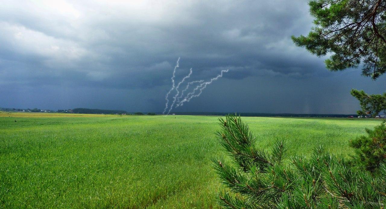На Тверскую область надвигается гроза и сильный ветер