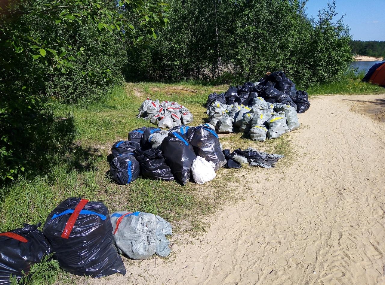 Жителям Тверской области предлагают принять участие в экологической акции