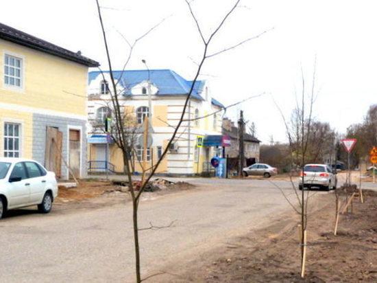 В городе Тверской области посадили молодые деревья
